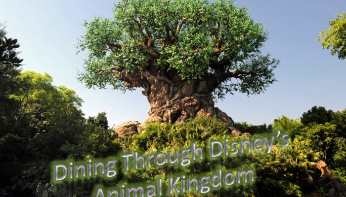 The 3, 2, 1 of Dining At Disney's Animal Kingdom Theme Park